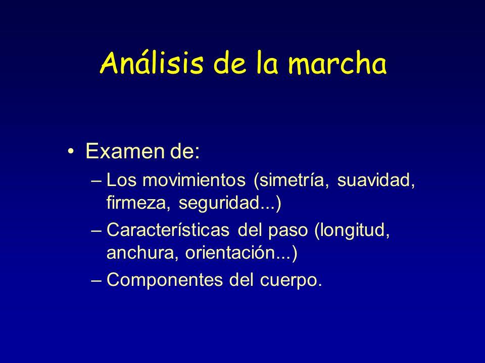 Análisis de la marcha Examen de: –Los movimientos (simetría, suavidad, firmeza, seguridad...) –Características del paso (longitud, anchura, orientació