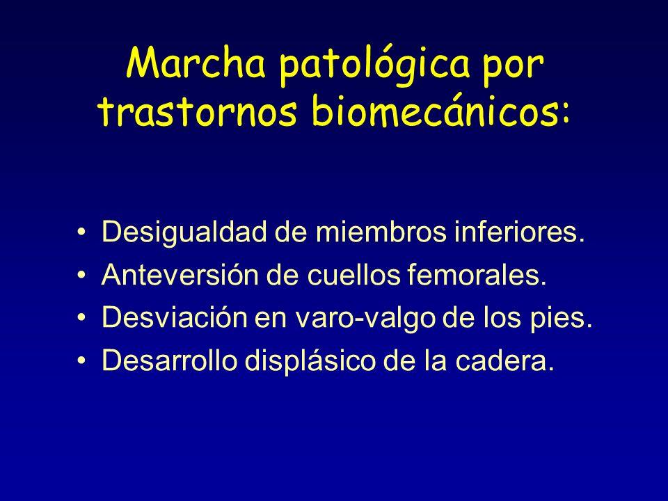 Marcha patológica por trastornos biomecánicos: Desigualdad de miembros inferiores. Anteversión de cuellos femorales. Desviación en varo-valgo de los p