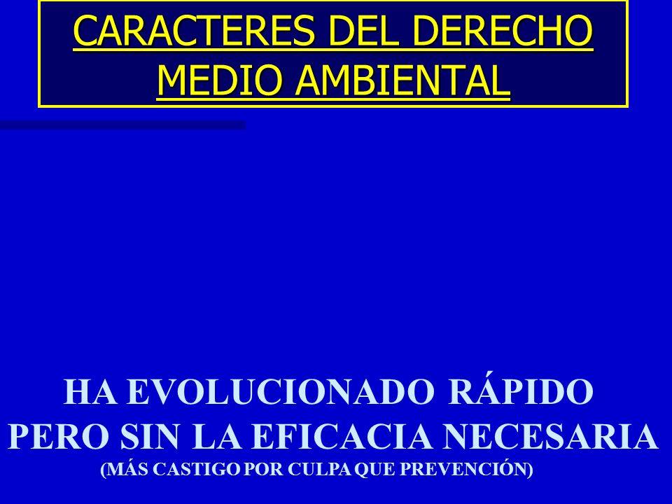 CARACTERES DEL DERECHO MEDIO AMBIENTAL HA EVOLUCIONADO RÁPIDO PERO SIN LA EFICACIA NECESARIA (MÁS CASTIGO POR CULPA QUE PREVENCIÓN)
