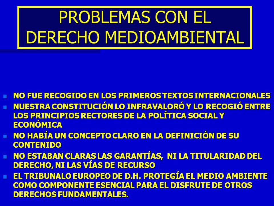 PROBLEMAS CON EL DERECHO MEDIOAMBIENTAL n NO FUE RECOGIDO EN LOS PRIMEROS TEXTOS INTERNACIONALES n NUESTRA CONSTITUCIÓN LO INFRAVALORÓ Y LO RECOGIÓ EN