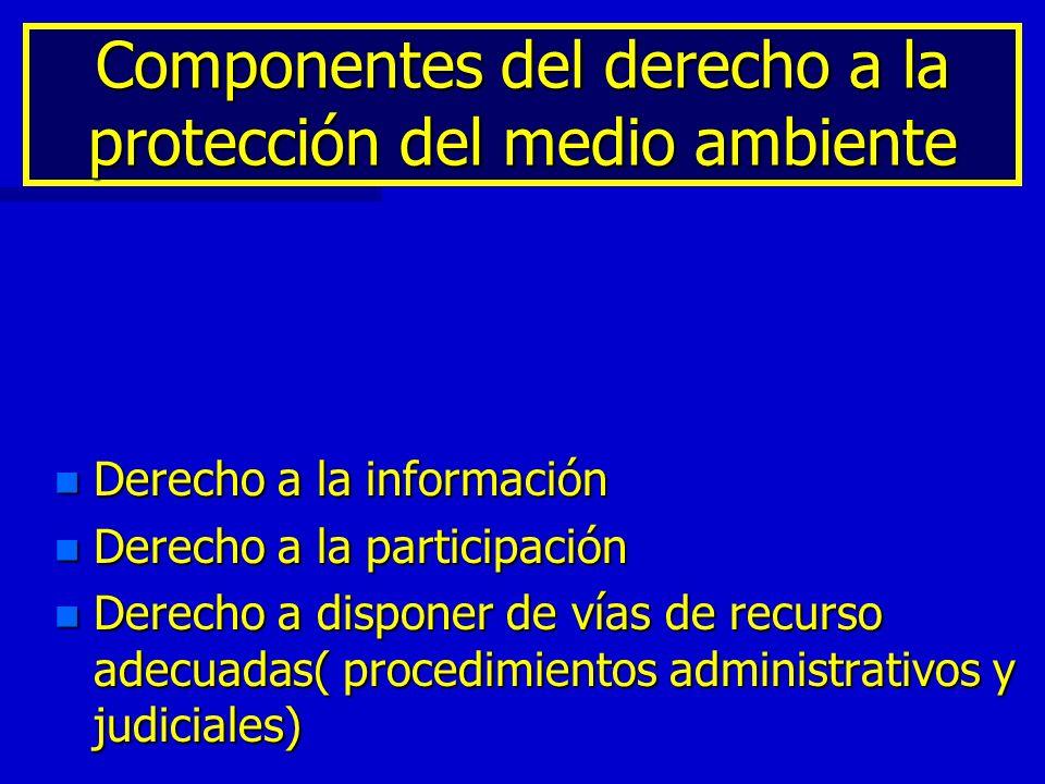 Componentes del derecho a la protección del medio ambiente n Derecho a la información n Derecho a la participación n Derecho a disponer de vías de rec