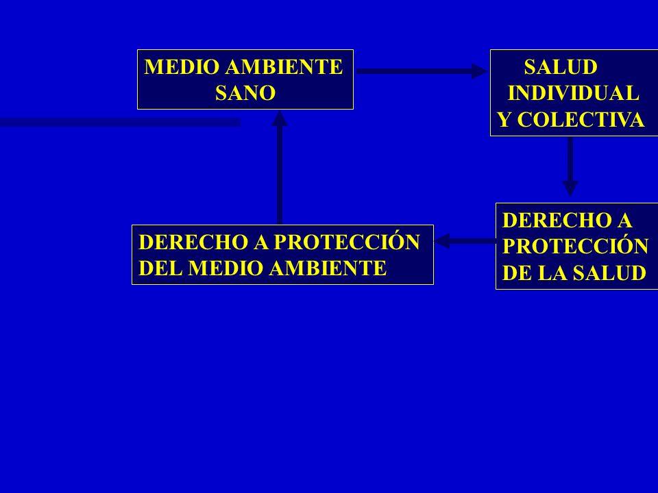 MEDIO AMBIENTE SANO SALUD INDIVIDUAL Y COLECTIVA DERECHO A PROTECCIÓN DEL MEDIO AMBIENTE DERECHO A PROTECCIÓN DE LA SALUD