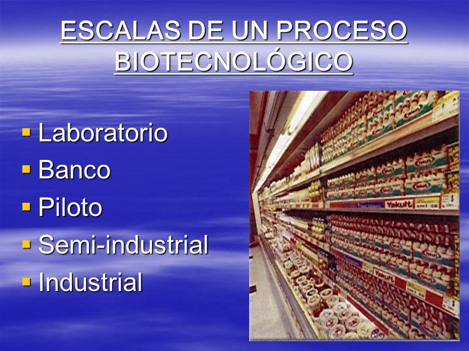 ESCALAS DE UN PROCESO BIOTECNOLÓGICO Laboratorio Laboratorio Banco Banco Piloto Piloto Semi-industrial Semi-industrial Industrial Industrial