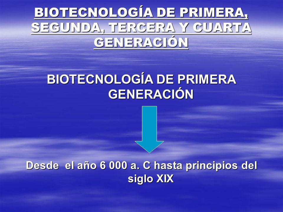 BIOTECNOLOGÍA DE PRIMERA, SEGUNDA, TERCERA Y CUARTA GENERACIÓN BIOTECNOLOGÍA DE PRIMERA GENERACIÓN Desde el año 6 000 a. C hasta principios del siglo