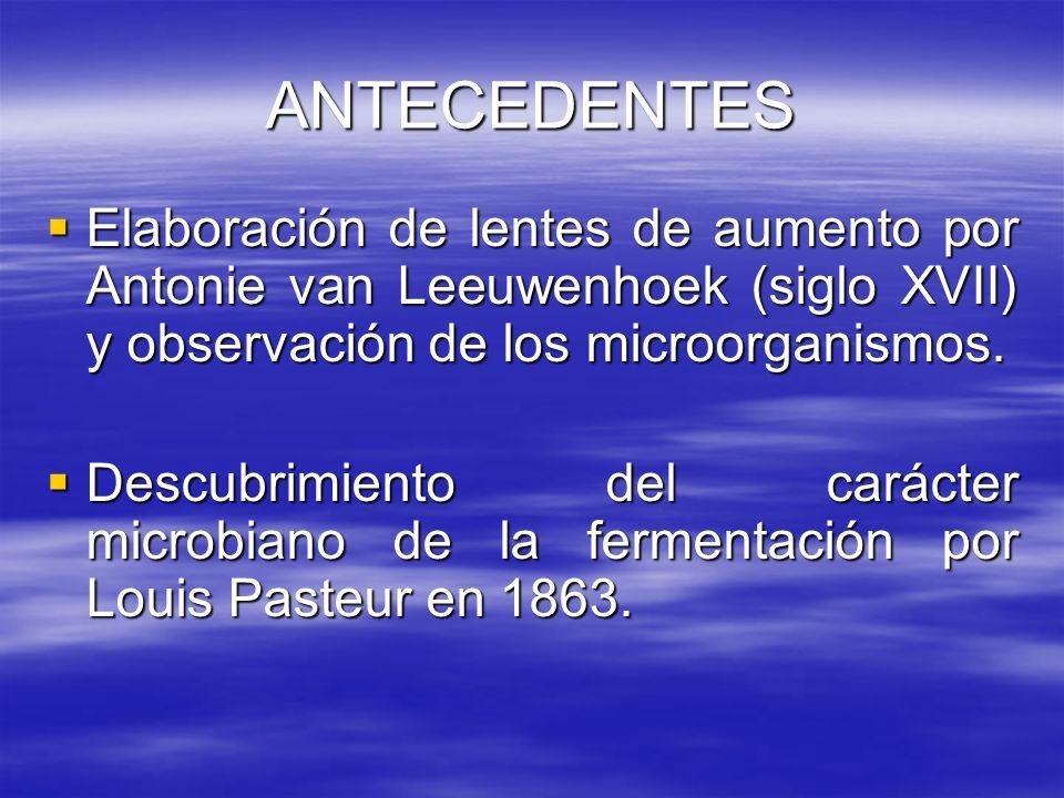 ANTECEDENTES Elaboración de lentes de aumento por Antonie van Leeuwenhoek (siglo XVII) y observación de los microorganismos. Elaboración de lentes de