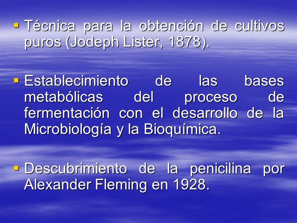 Técnica para la obtención de cultivos puros (Jodeph Lister, 1878). Técnica para la obtención de cultivos puros (Jodeph Lister, 1878). Establecimiento