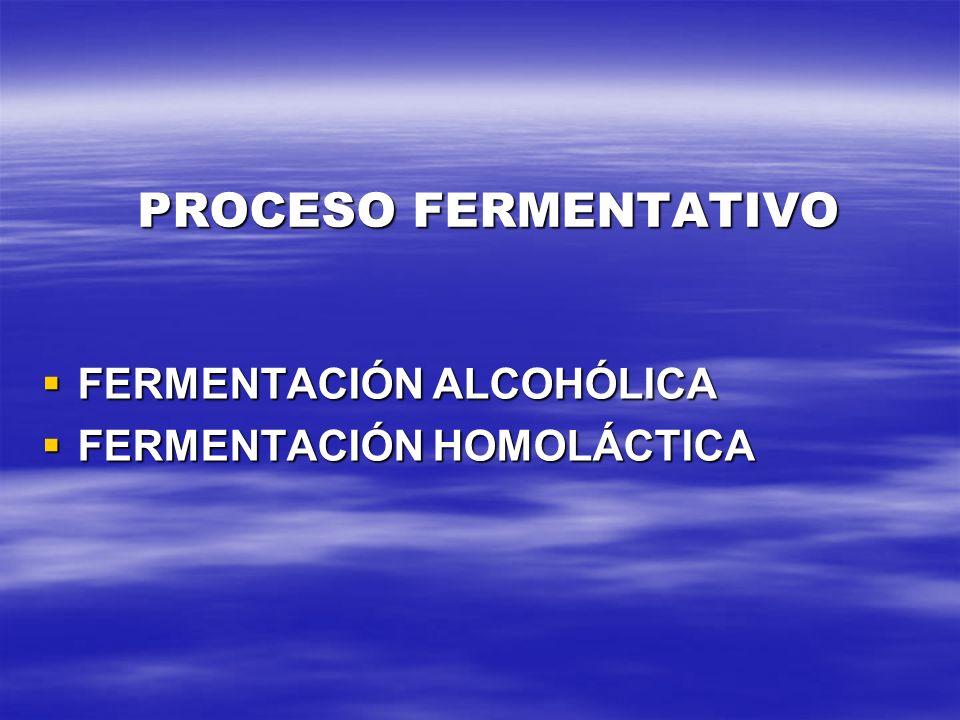 PROCESO FERMENTATIVO FERMENTACIÓN ALCOHÓLICA FERMENTACIÓN ALCOHÓLICA FERMENTACIÓN HOMOLÁCTICA FERMENTACIÓN HOMOLÁCTICA