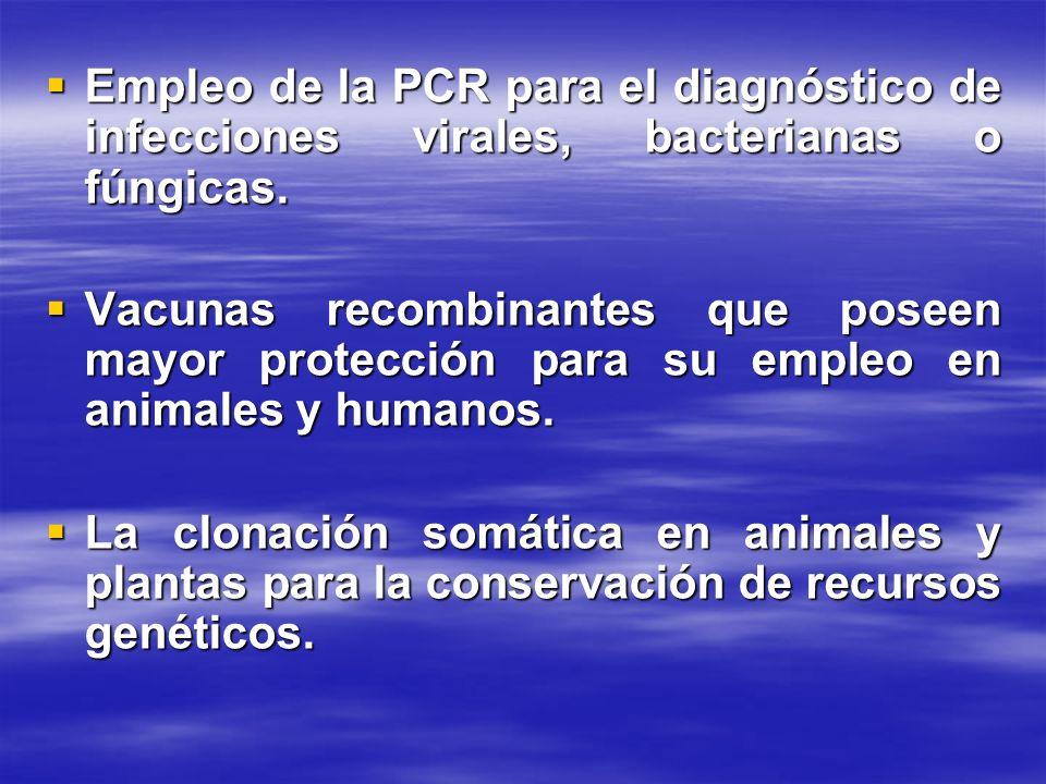 Empleo de la PCR para el diagnóstico de infecciones virales, bacterianas o fúngicas. Empleo de la PCR para el diagnóstico de infecciones virales, bact