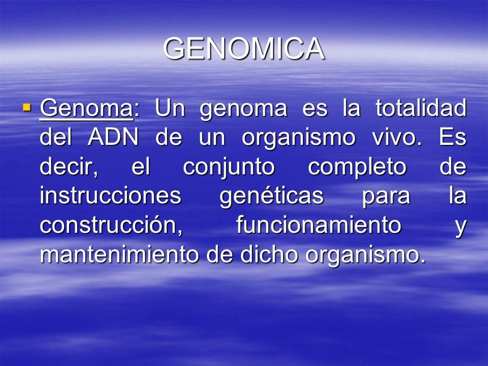GENOMICA Genoma: Un genoma es la totalidad del ADN de un organismo vivo. Es decir, el conjunto completo de instrucciones genéticas para la construcció