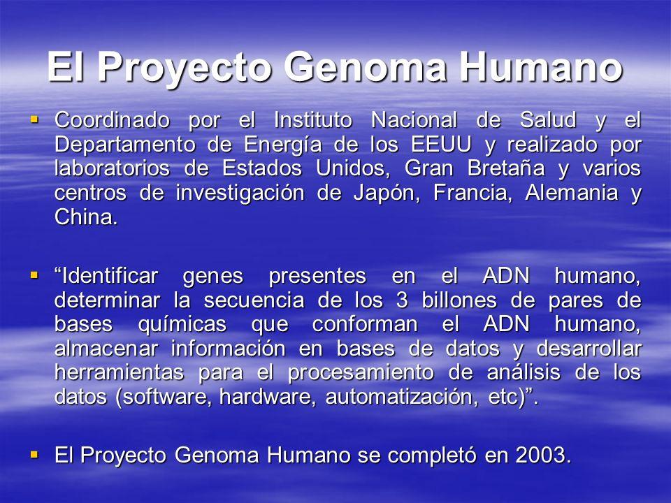 El Proyecto Genoma Humano Coordinado por el Instituto Nacional de Salud y el Departamento de Energía de los EEUU y realizado por laboratorios de Estad
