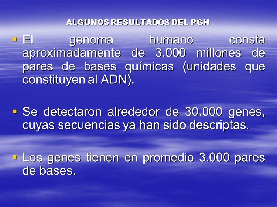 ALGUNOS RESULTADOS DEL PGH El genoma humano consta aproximadamente de 3.000 millones de pares de bases químicas (unidades que constituyen al ADN). El