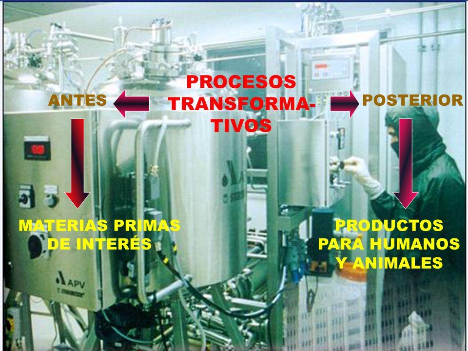 PROCESOS TRANSFORMA- TIVOS ANTESPOSTERIOR MATERIAS PRIMAS DE INTERÉS PRODUCTOS PARA HUMANOS Y ANIMALES
