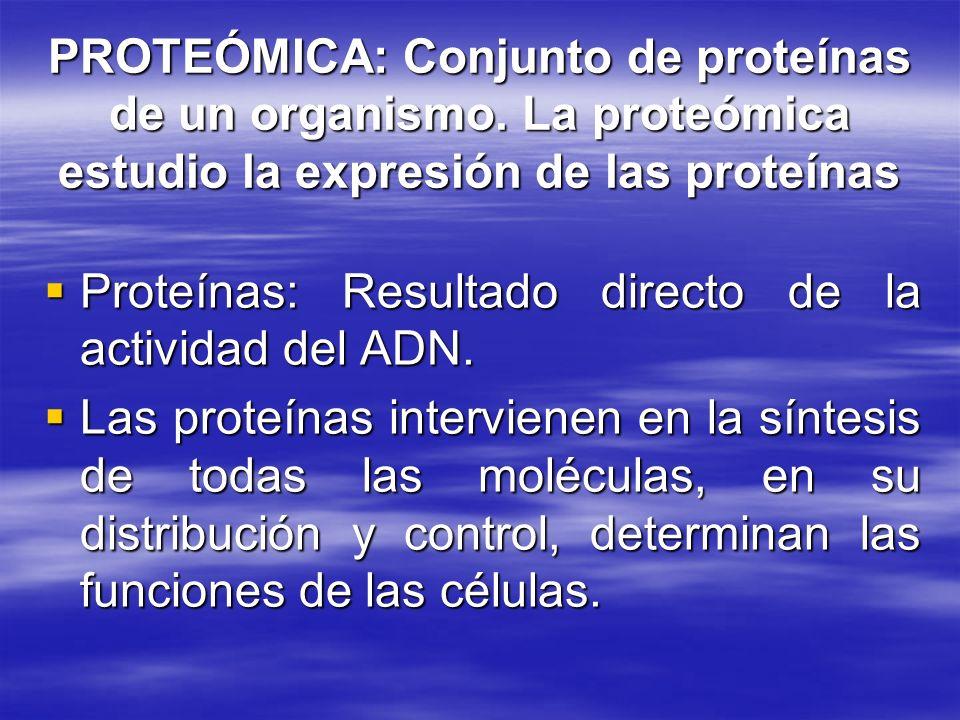 PROTEÓMICA: Conjunto de proteínas de un organismo. La proteómica estudio la expresión de las proteínas Proteínas: Resultado directo de la actividad de
