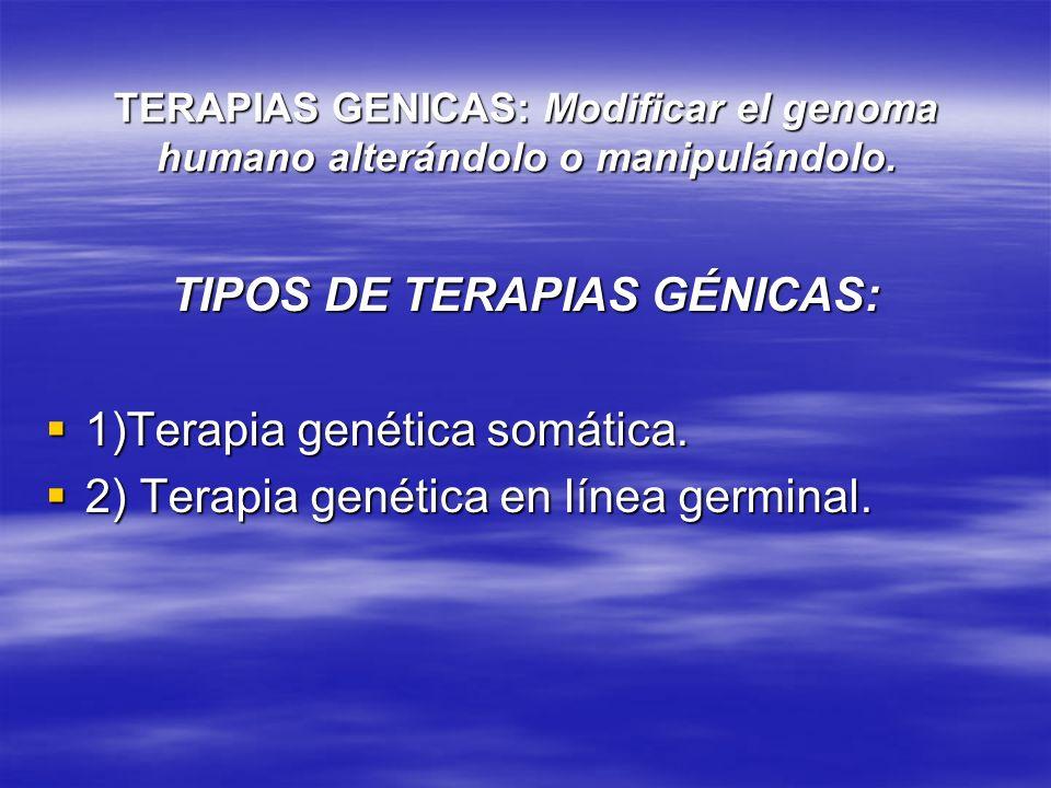 TERAPIAS GENICAS: Modificar el genoma humano alterándolo o manipulándolo. TIPOS DE TERAPIAS GÉNICAS: 1)Terapia genética somática. 1)Terapia genética s