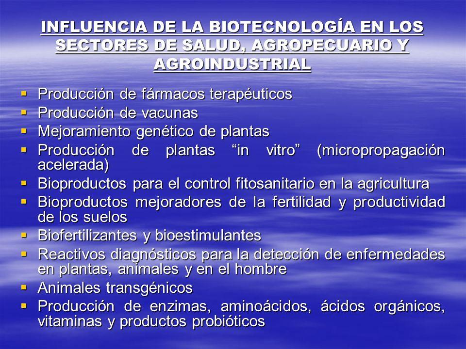 INFLUENCIA DE LA BIOTECNOLOGÍA EN LOS SECTORES DE SALUD, AGROPECUARIO Y AGROINDUSTRIAL Producción de fármacos terapéuticos Producción de fármacos tera