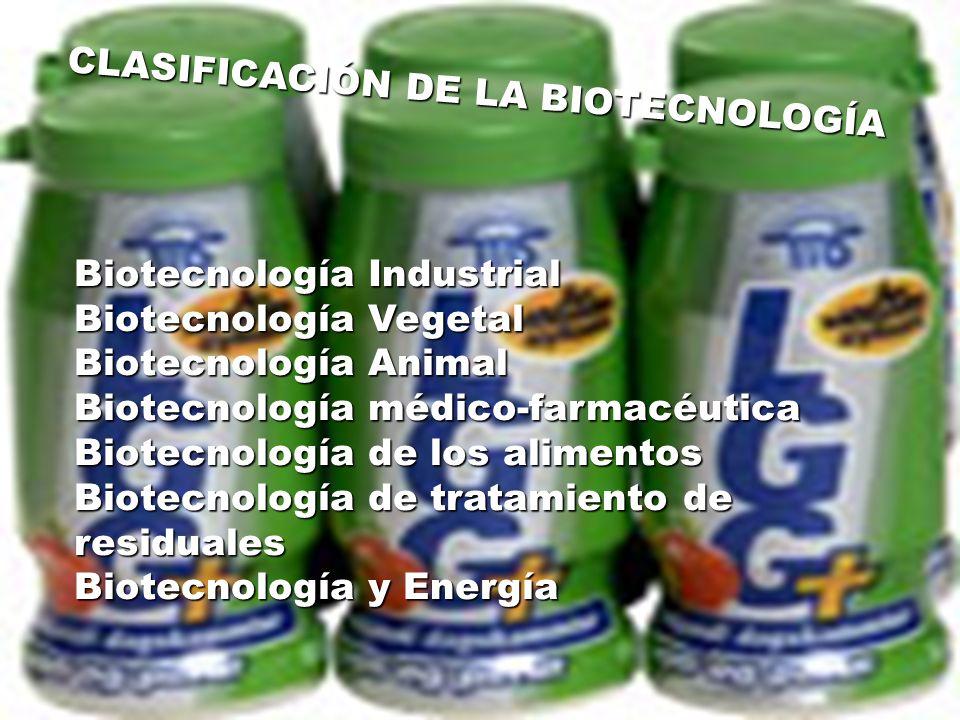CLASIFICACIÓN DE LA BIOTECNOLOGÍA Biotecnología Industrial Biotecnología Vegetal Biotecnología Animal Biotecnología médico-farmacéutica Biotecnología