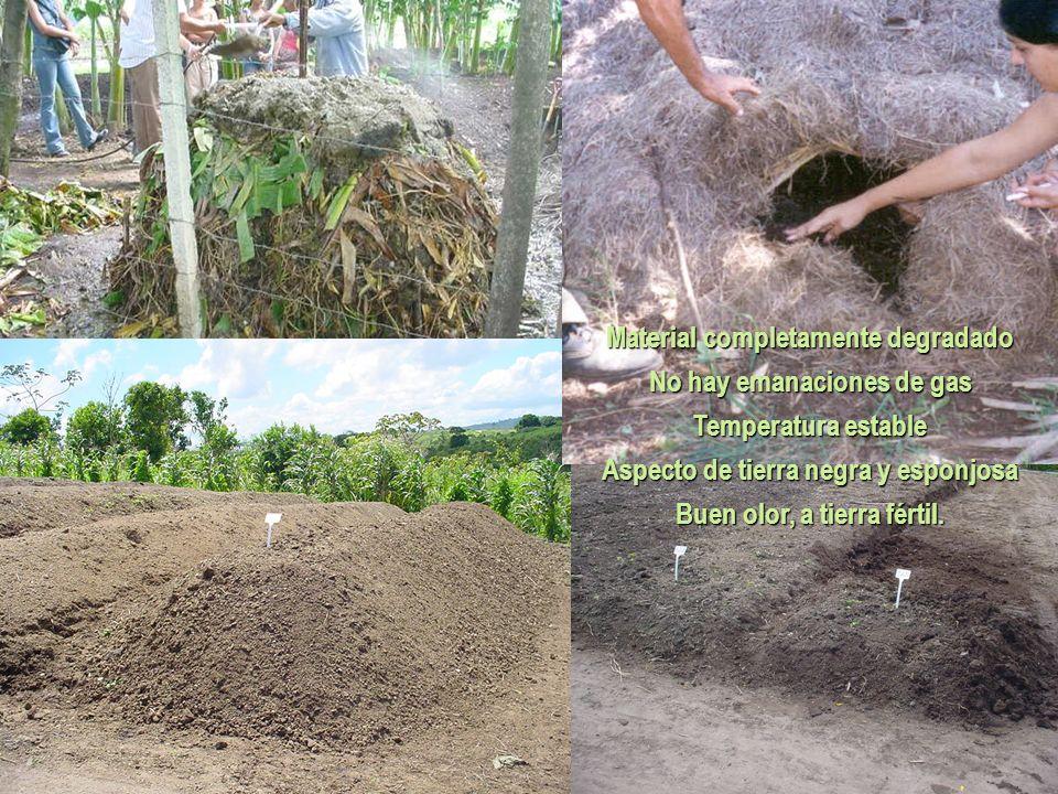 Material completamente degradado No hay emanaciones de gas Temperatura estable Aspecto de tierra negra y esponjosa Buen olor, a tierra fértil.