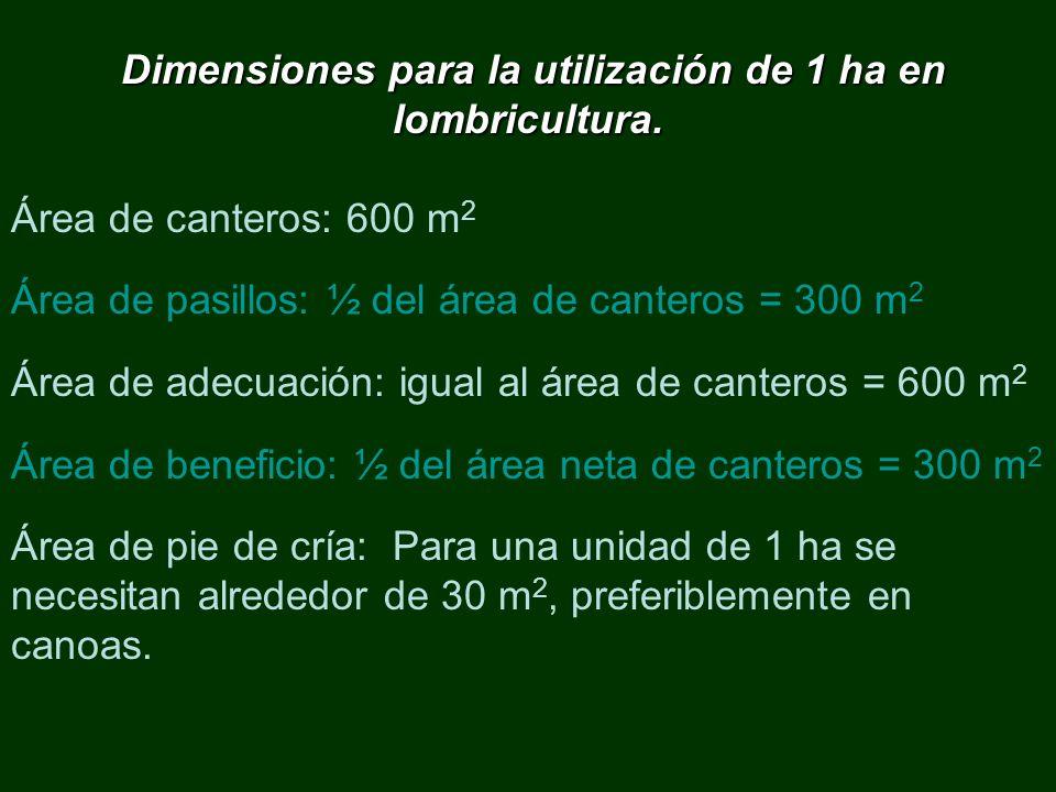 Dimensiones para la utilización de 1 ha en lombricultura. Área de canteros: 600 m 2 Área de pasillos: ½ del área de canteros = 300 m 2 Área de adecuac