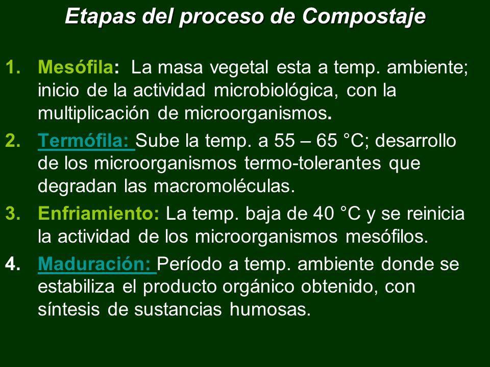 Etapas del proceso de Compostaje 1.Mesófila: La masa vegetal esta a temp. ambiente; inicio de la actividad microbiológica, con la multiplicación de mi
