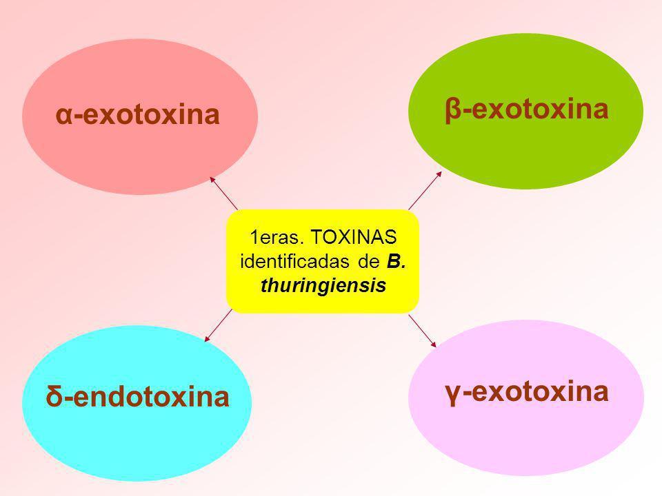 α-exotoxina 1eras. TOXINAS identificadas de B. thuringiensis δ-endotoxina β-exotoxina γ-exotoxina