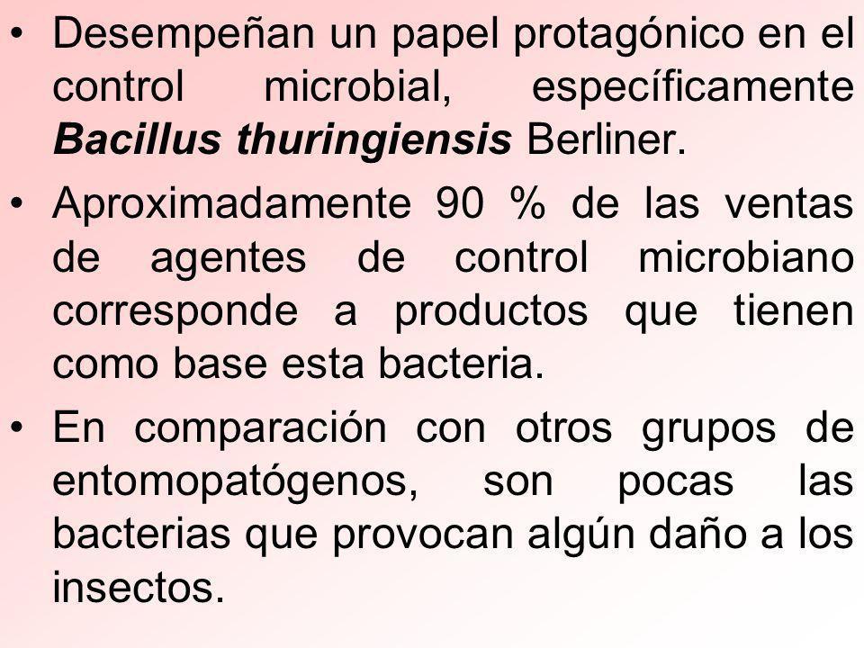 Desempeñan un papel protagónico en el control microbial, específicamente Bacillus thuringiensis Berliner.