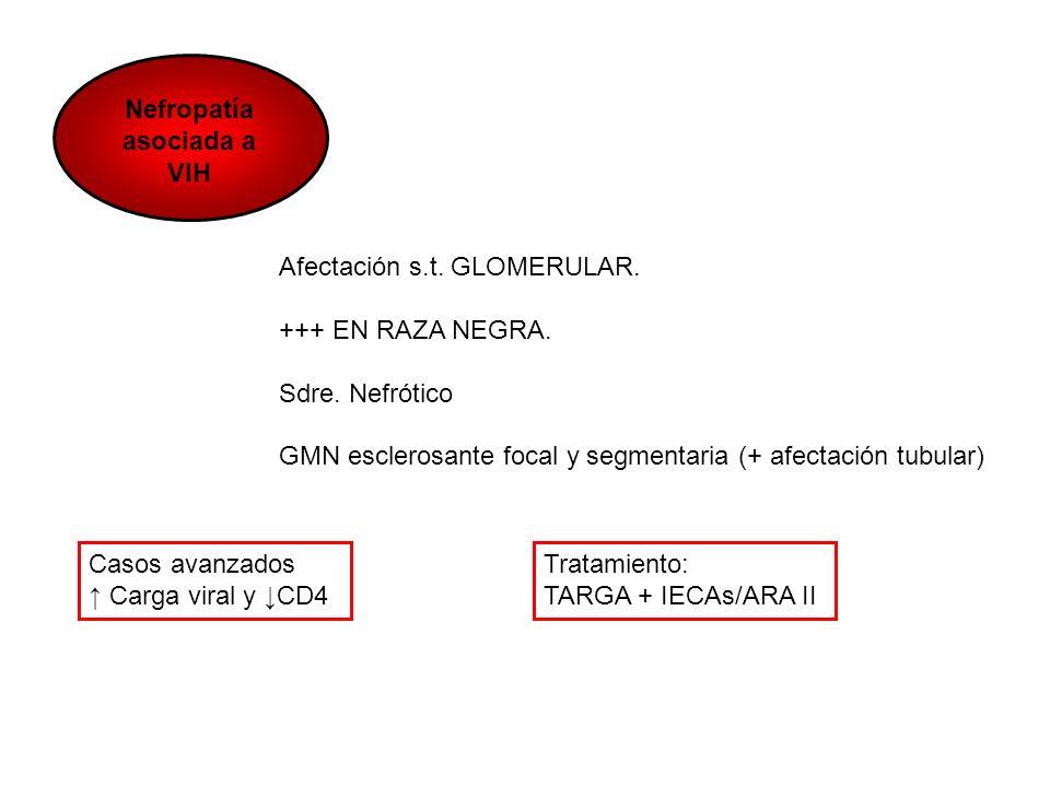 Nefropatía asociada a VIH Afectación s.t. GLOMERULAR. +++ EN RAZA NEGRA. Sdre. Nefrótico GMN esclerosante focal y segmentaria (+ afectación tubular) C