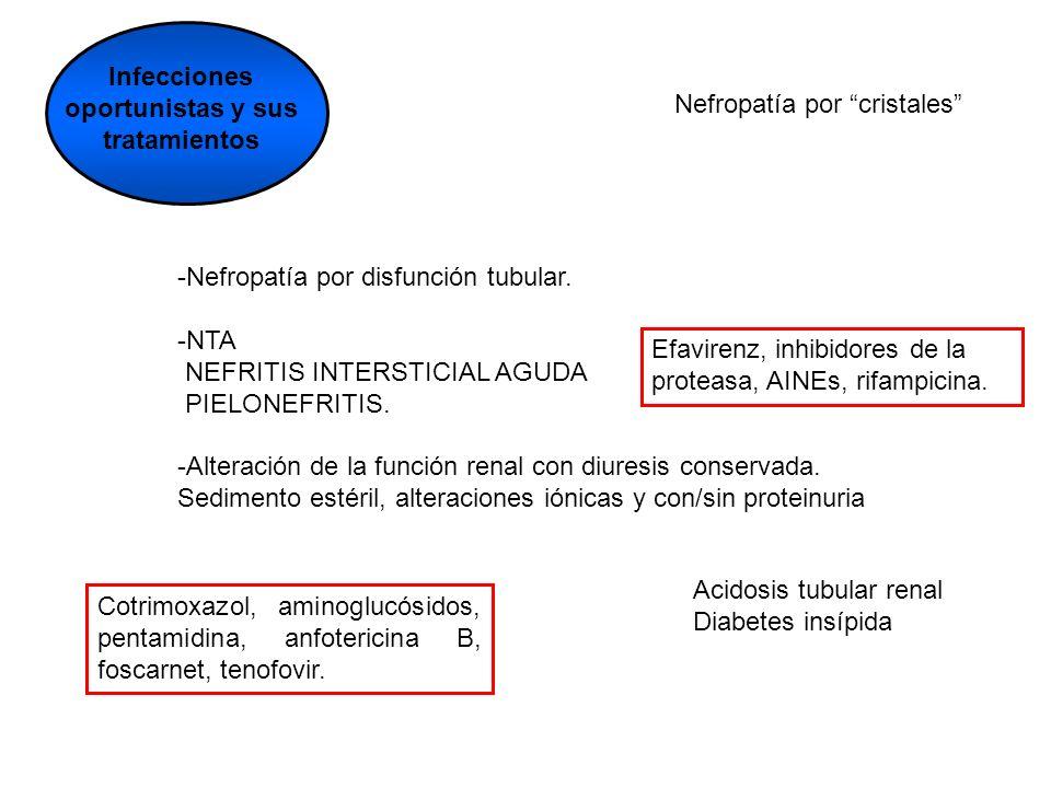 Infecciones oportunistas y sus tratamientos -Nefropatía por disfunción tubular. -NTA NEFRITIS INTERSTICIAL AGUDA PIELONEFRITIS. -Alteración de la func