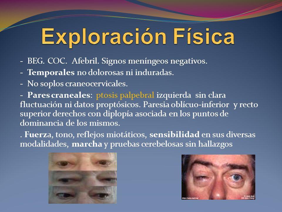 MIOPATÍAS MITOCONDRIALES Oftalmoplejía externa progresiva (OEP) Síndrome de Kearns- Sayre Miopatía, encefalopatía, acidosis láctica y episodios stroke-like ( MELAS) Mitochondrial neurogastrointes tinal encephalopathy syndrome (MNGIE)