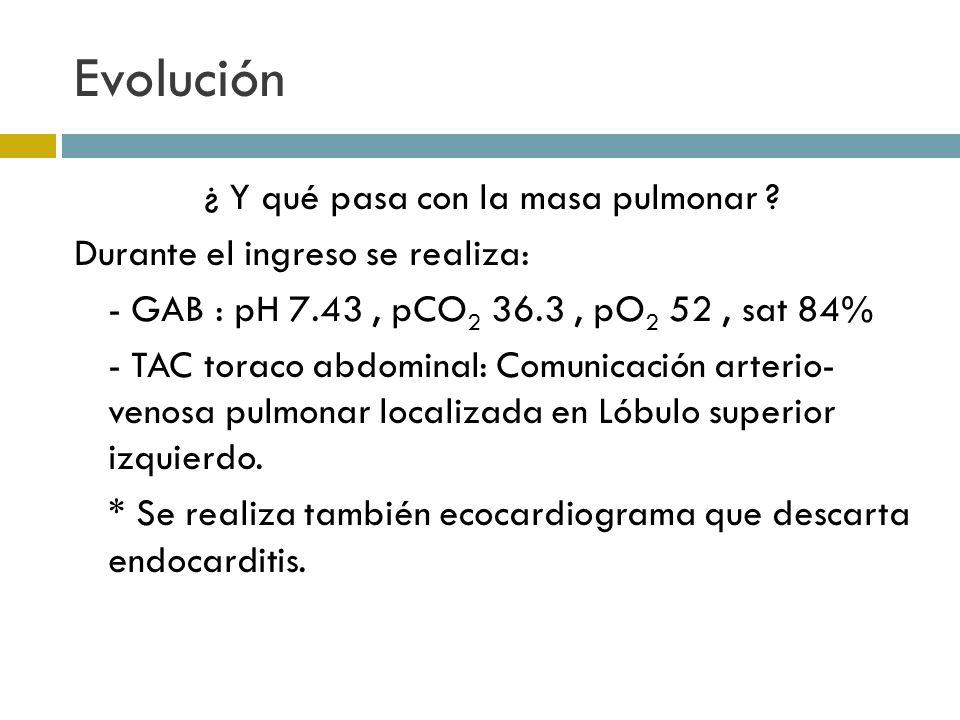 Evolución ¿ Y qué pasa con la masa pulmonar ? Durante el ingreso se realiza: - GAB : pH 7.43, pCO 2 36.3, pO 2 52, sat 84% - TAC toraco abdominal: Com