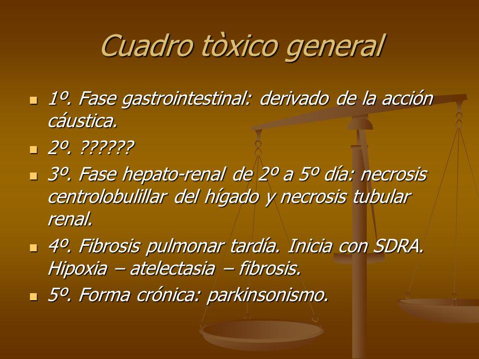 Cuadro tòxico general 1º. Fase gastrointestinal: derivado de la acción cáustica. 1º. Fase gastrointestinal: derivado de la acción cáustica. 2º. ??????
