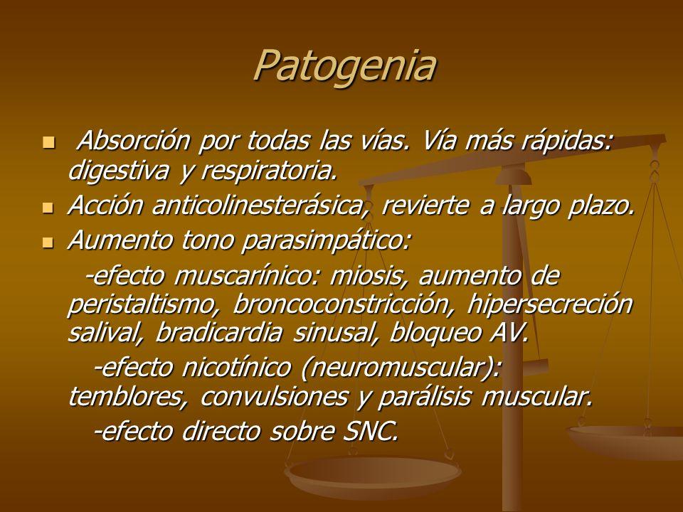 Mecanismo de muerte: Parálisis respiratoria o tetanización Parálisis respiratoria o tetanización Bloqueo AV- paro cardíaco.