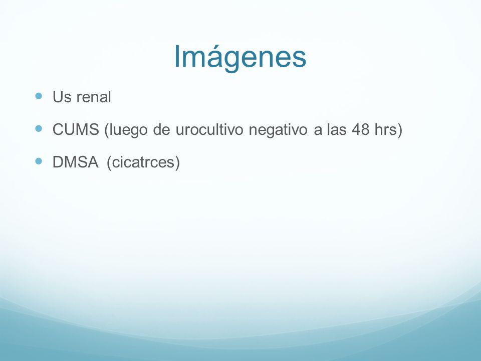 Imágenes Us renal CUMS (luego de urocultivo negativo a las 48 hrs) DMSA (cicatrces)