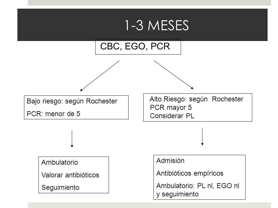 1-3 MESES CBC, EGO, PCR Bajo riesgo: según Rochester PCR: menor de 5 Ambulatorio Valorar antibióticos Seguimiento Alto Riesgo: según Rochester PCR may