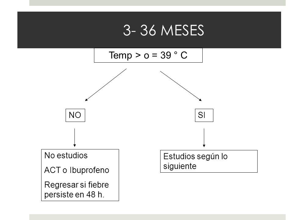 3- 36 MESES Temp > o = 39 ° C NO No estudios ACT o Ibuprofeno Regresar si fiebre persiste en 48 h. SI Estudios según lo siguiente