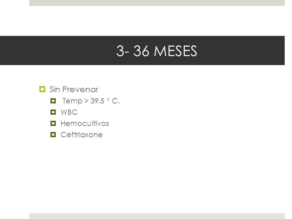 3- 36 MESES Sin Prevenar Temp > 39.5 ° C. WBC Hemocultivos Ceftriaxone