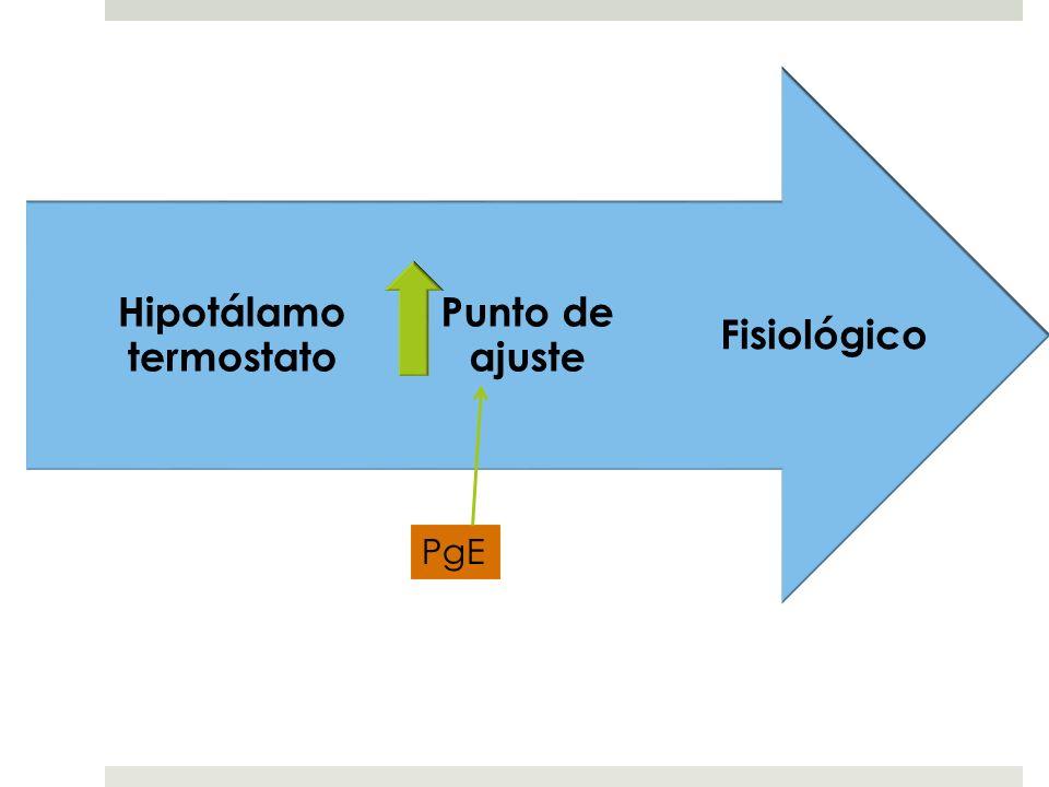PATOGÉNESIS Elevación del punto de referencia (set-point) del centro termoregulador del hipotálamo.