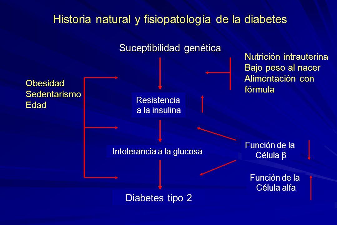 Suceptibilidad genética Obesidad Sedentarismo Edad Resistencia a la insulina Nutrición intrauterina Bajo peso al nacer Alimentación con fórmula Intole