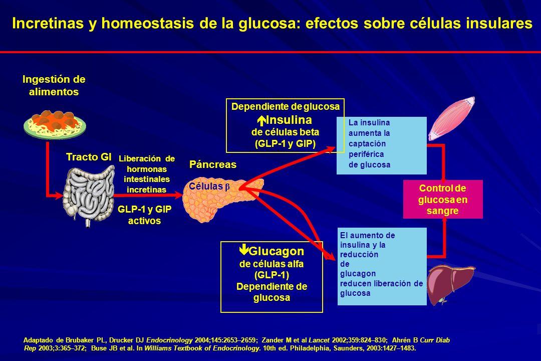 Adaptado de Brubaker PL, Drucker DJ Endocrinology 2004;145:2653–2659; Zander M et al Lancet 2002;359:824–830; Ahrén B Curr Diab Rep 2003;3:365–372; Bu