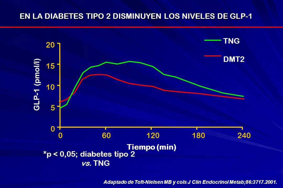 *p < 0,05; diabetes tipo 2 vs. TNG EN LA DIABETES TIPO 2 DISMINUYEN LOS NIVELES DE GLP-1 GLP-1 (pmol/l) 0 5 10 15 20 060120180240 Tiempo (min) Adaptad