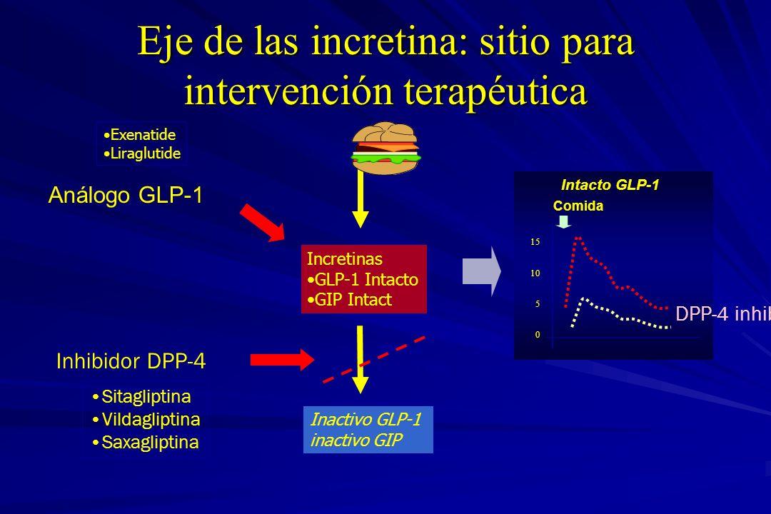 Eje de las incretina: sitio para intervención terapéutica Inactivo GLP-1 inactivo GIP DPP-4 t 1/2 ~ 1 min Incretinas GLP-1 Intacto GIP Intact Análogo
