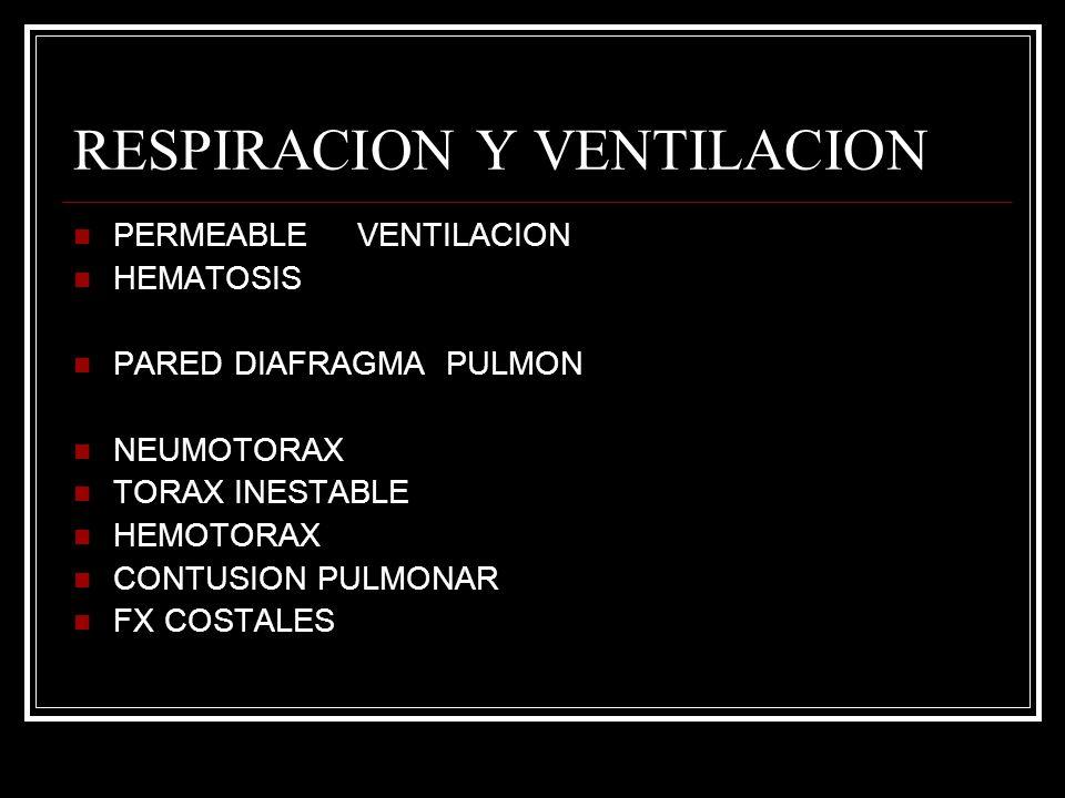 RESPIRACION Y VENTILACION PERMEABLE VENTILACION HEMATOSIS PARED DIAFRAGMA PULMON NEUMOTORAX TORAX INESTABLE HEMOTORAX CONTUSION PULMONAR FX COSTALES