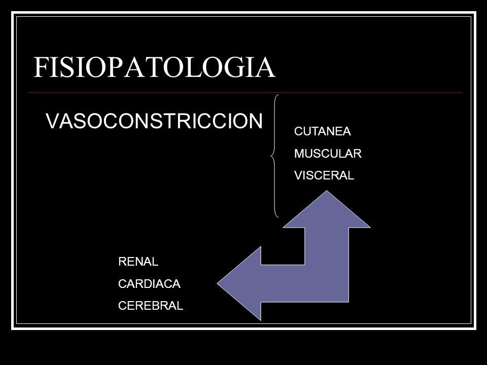 FISIOPATOLOGIA VASOCONSTRICCION CUTANEA MUSCULAR VISCERAL RENAL CARDIACA CEREBRAL