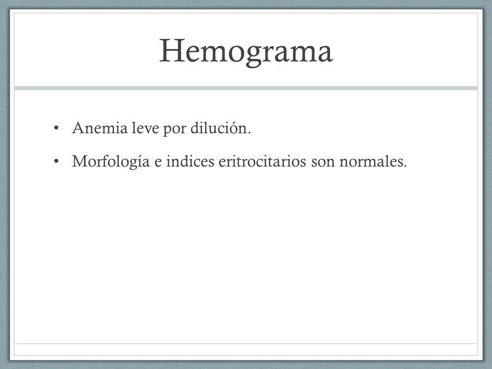 Hemograma Anemia leve por dilución. Morfología e indices eritrocitarios son normales.