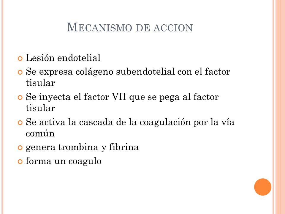 M ECANISMO DE ACCION Lesión endotelial Se expresa colágeno subendotelial con el factor tisular Se inyecta el factor VII que se pega al factor tisular