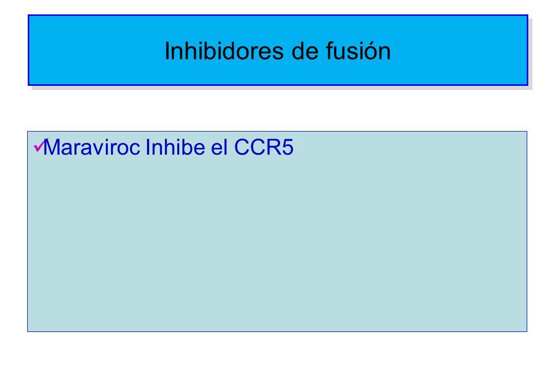 Inhibidores de fusión Maraviroc Inhibe el CCR5