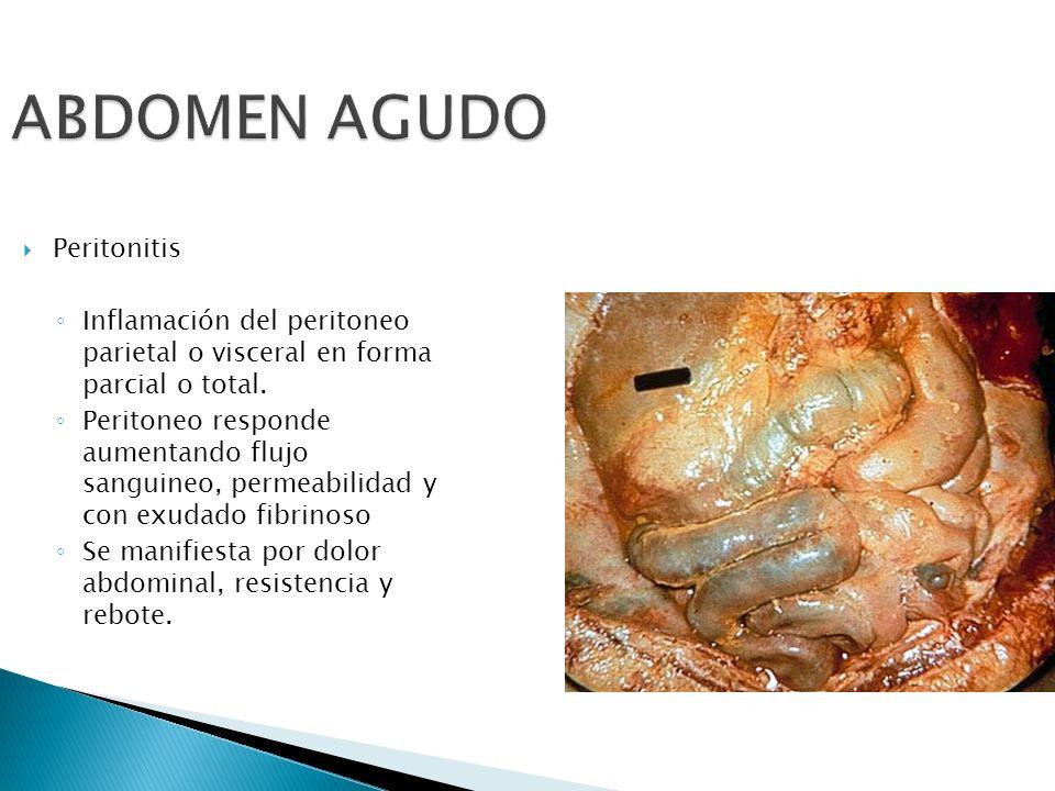 ABDOMEN AGUDO Peritonitis Inflamación del peritoneo parietal o visceral en forma parcial o total. Peritoneo responde aumentando flujo sanguineo, perme