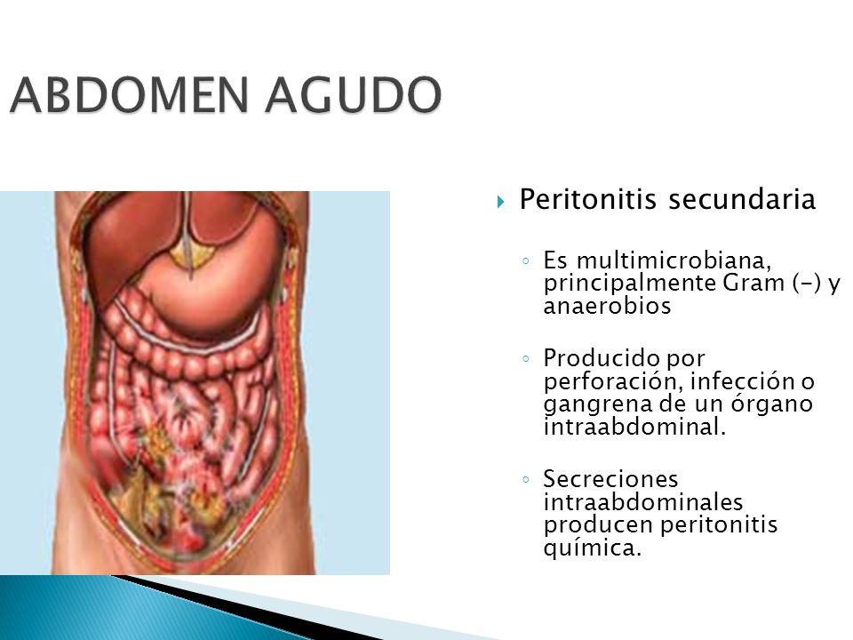 ABDOMEN AGUDO Peritonitis secundaria Es multimicrobiana, principalmente Gram (-) y anaerobios Producido por perforación, infección o gangrena de un ór
