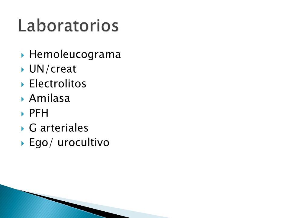 Hemoleucograma UN/creat Electrolitos Amilasa PFH G arteriales Ego/ urocultivo