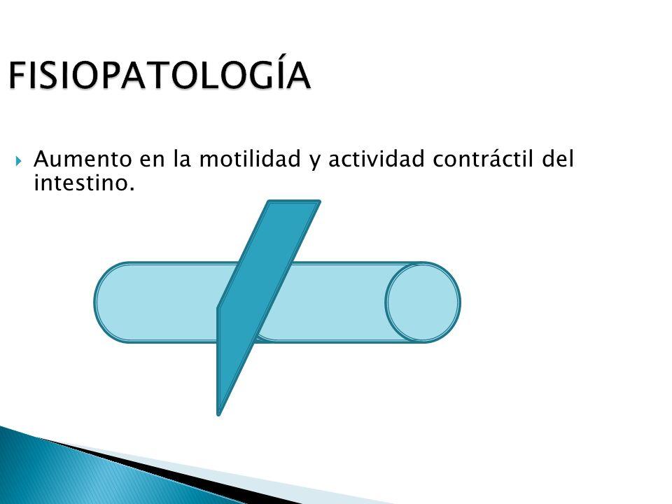 FISIOPATOLOGÍA Aumento en la motilidad y actividad contráctil del intestino.
