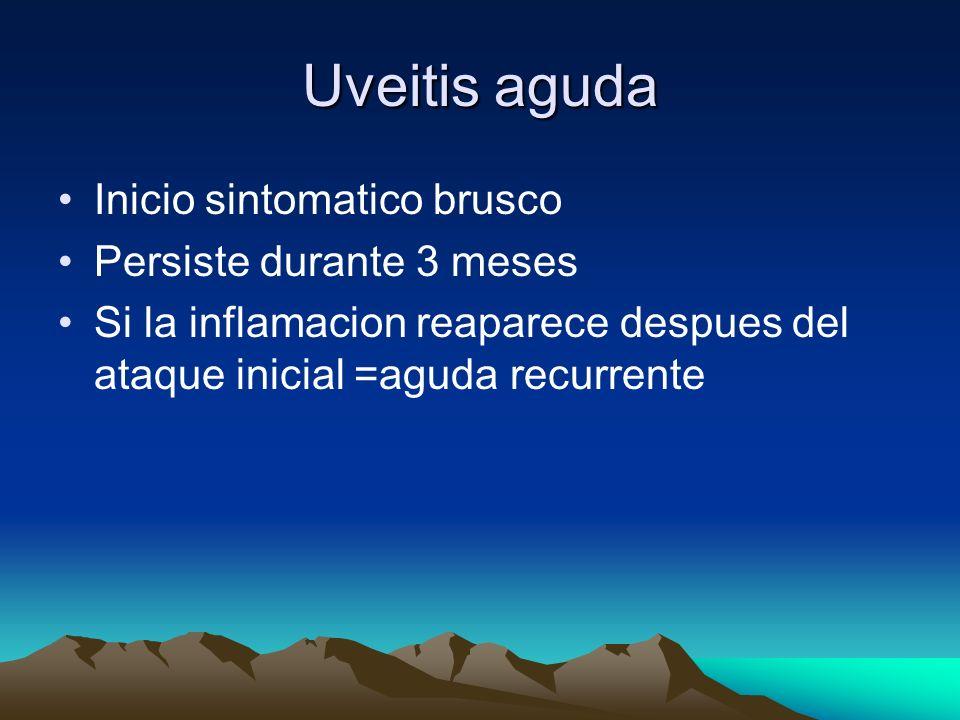 Uveitis aguda Inicio sintomatico brusco Persiste durante 3 meses Si la inflamacion reaparece despues del ataque inicial =aguda recurrente